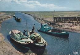 33 GIRONDE  ARCACHON ANDERNOS LES BAINS Retour Des Chalands à Marée Basses - Arcachon