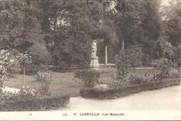 LUNEVILLE - 54 -  Les Bosquets - VAN - - Luneville