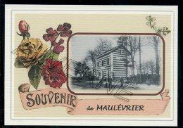 49  MAULEVRIER -  .  ....  Gare.... Souvenir  Creation Moderne Série Limitée Et Numerotée 1 à 10 ... N° 5 /10 - Seiches Sur Le Loir