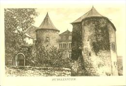 Autres. Junglister. Le Chateau De Burglinster . - Autres