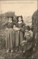 29 - ILE DE SEIN - Récolte Du Goëmon - Costumes - Coiffes - Ile De Sein