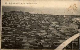 29 - ILE DE SEIN - Champs - Agriculture - Ile De Sein