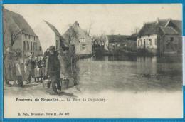 Environs De Bruxelles (carte Circulée) - La Mare De Duysbourg - Tervuren