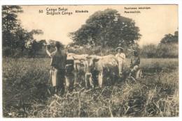 1/1. Thème :  Agriculture Faucheuse Mécanique. Entier Congo Belge Kinschasa 6 NOV 20. - Landwirtschaft
