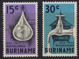 1250(8). Suriname, 1972, MNH (**) Michel 616-617 - Surinam