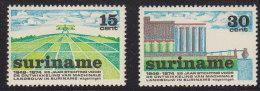 1250(11). Suriname, 1974, MNH (**) Michel 673-674 - Surinam