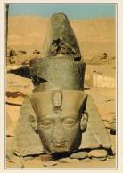 EGITTO  TEBE:  IL  RAMESSEUM        (NUOVA CON DESCRIZIONE DEL SITO SUL RETRO) - Egypt