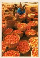 BURKINA-FASO  BOBO-DIULASSO:  IL  MERCATO     (NUOVA CON DESCRIZIONE DEL SITO SUL RETRO) - Burkina Faso
