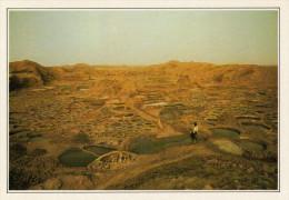 NIGER     TEGUIDDA-I-N TESSOUM:    SALINE    (NUOVA CON DESCRIZIONE DEL SITO SUL RETRO) - Niger
