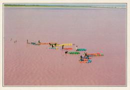 SENEGAL  LAGO ROSA:  RACCOLTA DEL SALE     (NUOVA CON DESCRIZIONE DEL SITO SUL RETRO) - Senegal