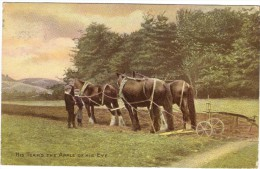 His Team´s The Apple Of His Eye Colour Postcard - Farm Horses - 1914 - Teams