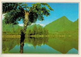 LA REUNIONE    CIRCO DI SALAZIE:  LO  STAGNO    (NUOVA CON DESCRIZIONE DEL SITO SUL RETRO) - Réunion