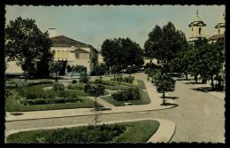 VILA VIÇOSA -   Carte Postale - Evora