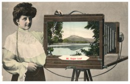 9558 MA Deerfield 1904 Photographer, Box Camera, View Mt.Sugar Loaf - Other