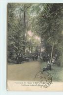 PERUWELZ - Pensionnat Des Dames De Saint Charles, L'allée De Saint Michel Dans La Parc. - Péruwelz