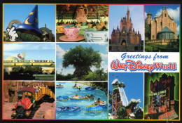 Walt Disney World - Gelaufen - Disneyland