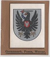 Sammelbild Posen Poznan Grenzmark Kurmark Wappenschau Wappen Schau Serie ? Bild ? Garbaty Zigarettenfabrik Berlin - Zigaretten
