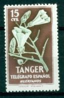 Tanger ( Hors Série )  Mnh*** - Otros