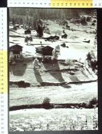 Z44216 VAL DI RABBI PANORAMA - Vecchi Documenti
