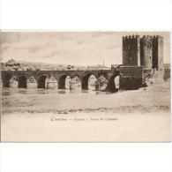 CDBTP5465-LFT1862 .Tarjeta Postal DE CORDOBA.Puente Debri El RIO GUADALQUIVIR Y TORRE DE CALAHORRA.Cordoba - Córdoba