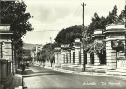 GROSSETO - ORBETELLO  - TOS 877 - Grosseto