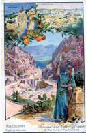 Nos Colonies Algerie Et Tunisie. Souvenir De La Belle Jardiniere, 2 Rue Pont Neuf, Paris - Werbepostkarten