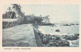 Africa--Guinee Française--1931--Conakry--Exposition Coloniale - Guinea Francesa