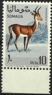 SOMALIA - 1968 Antelopes (Dibatag Gazelle) 10s MNH **        SG 485  Sc 335 - Somalia (1960-...)