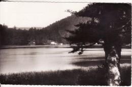 LA BRESSE (Vosges)  Vue Sur Le Lac De Blanchemer (Environ De Gérardmer)  VOIR 2 SCANS - Autres Communes