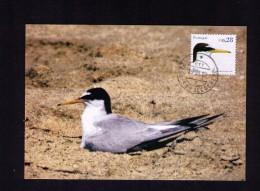 Carte Maximum Cards Maxicards Andorinha Hirondelles Birds Animals Faune Oiseaux 2002 Expertisé Certificate Portugal Mc29 - Swallows