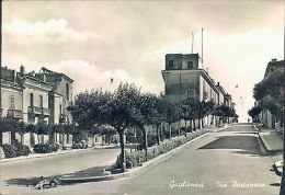 N273 - Guglionesi - Campobasso - Via Portanova - Campobasso