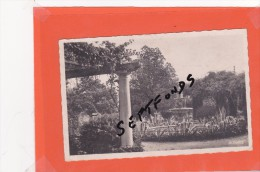 CPA/CPSM Cachet Ou Timbre Au Dos: SAINT LAURENT DU VAR Jardin Public - Francia