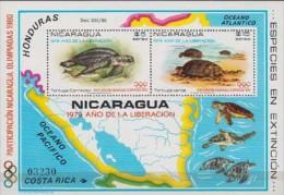 Nicaraqua. 1980. Turtle  Sheet. 2v. Michel BL 114. MNH 20767 - Turtles