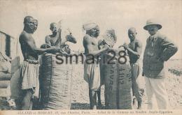 ACHAT DE LA GOMME AU SOUDAN ANGLO-EGYPTIEN - ALLAND ET ROBERT 12 RUE CHARLOT PARIS - Sudán