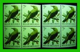 BUZIN - 2476** Loriot / Wielewaal - 2 NUANCES FLUOR - 1985-.. Oiseaux (Buzin)