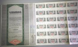 LIQUIGAS - SOCIETA´ PER AZIONI  /   TITOLO  AZIONARIO DA 5  AZIONI  _  1974 - Electricité & Gaz