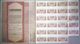 LIQUIGAS - SOCIETA´ PER AZIONI  /   TITOLO  AZIONARIO DA 1000  AZIONI  _  1974 - Electricité & Gaz