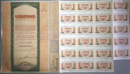 LIQUIGAS - SOCIETA´ PER AZIONI  /   TITOLO  AZIONARIO DA 5000  AZIONI  _  1974 - Electricité & Gaz