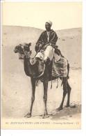 AFRIQUE DU NORD -  Scènes Et Types D' Egypte - Dans Le Désert - Superbe Méhariste - Afrique