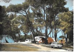 84- VEDENE - CAMPING FLORY -CAMPEURS Sous L'OMBRAGE Des PINS -  Voiture 1960- SUP - Otros Municipios