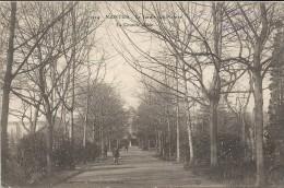 NANTES - 44 -  Le Jardin Des Plantes - La Grande Allée -  - VAN - - Nantes