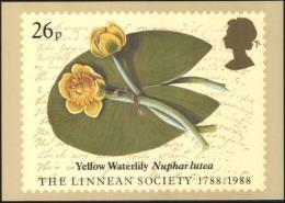 EUROPE UK UNITED KINGDON ENGLAND 1988MNH THE LINNEAN SOCIETY 1788 - 1988 YELLOW WATERLILY NURPHAR  POST CARD POSTCARD - England