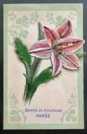 Litho Decor Art Nouveau Collage Decoupis LYS Iris Ou ORCHIDEES Et Fleurs Naturelles Voyagé Sous Enveloppe Top - A Systèmes