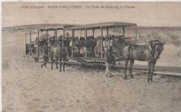 .LE TRAM DE BELISSAIRE - Arcachon
