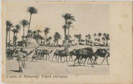 Oasis De Hamamdji Tripoli Caravane  Tripoli De Barbarie  Edit Simeone Di H. Naim - Libye