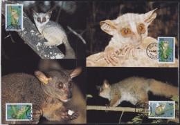 7140. Tanzania, 1989, WWF (World Wide Fund For Nature), Zanzibar Galago, CM - Tanzanie (1964-...)