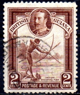 BRITISH GUIANA 1934 King George V - 2c Indian Shooting Fish   FU - British Guiana (...-1966)