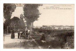 Dept 33,Gironde,Cpa Listrac,Vue Générale Prise De La Route De Bordeaux - France