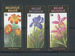 België      Y / T    2357  / 2359    (XX) - Belgique