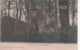 SAINT-DIZIER : (52) Le Lion  De La Marina - Saint Dizier